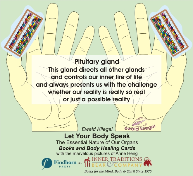Reflexology on the Hand - Pituitary gland – Ewald Kliegel (c)